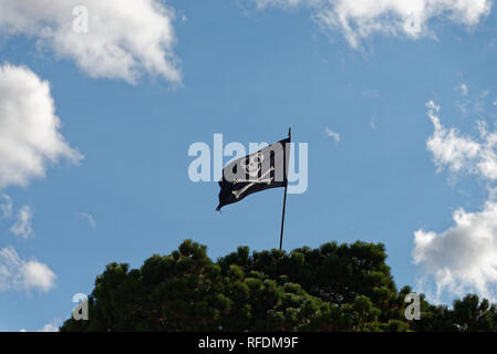 The black and white, jolly roger, skull and cross bones pirate flag flies high from a green tree. - Stock Photo