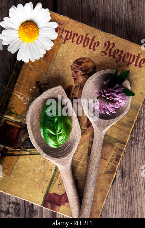 old cookbook with wooden spoon, clover, basil and daisy flower on wooden background - Stock Photo