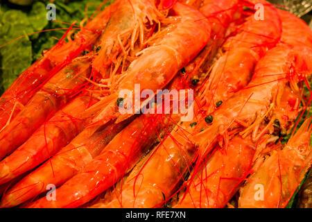 Gamba prawns (Aristeidae) are sold inside the Mercat de Sant Josep de la Boqueria, a public market with an entrance from La Rambla - Stock Photo