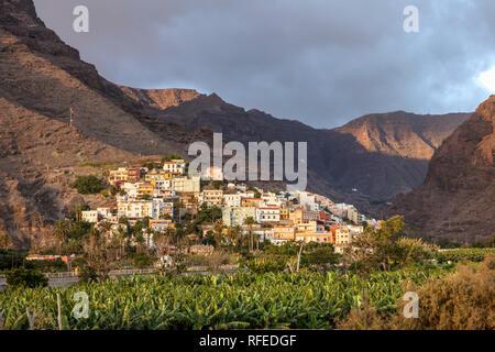 Spain, Canary islands, La Gomera. Valle Gran Rey. Banana plantation and village La Calera. - Stock Photo
