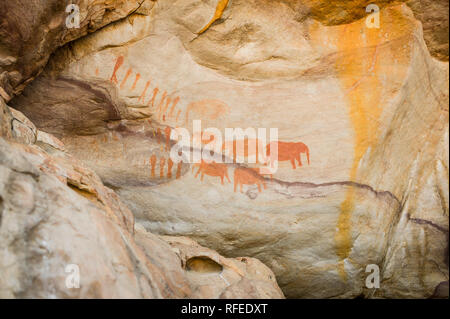 The elephant paintings rock art site at the Stadsaal caves, Cederberg, is estimated to be at least 1000 years old and created by San people - Stock Photo