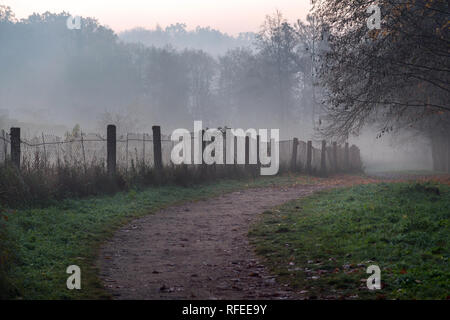 Misty path in the park on early foggy autumn morning. Old fence, autumnal trees and road going into perspective disappearing in fog - Stock Photo
