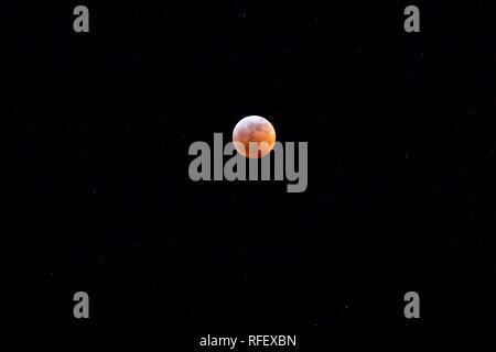Lunar Eclipse - Super Wolf Blood Moon - Stock Photo