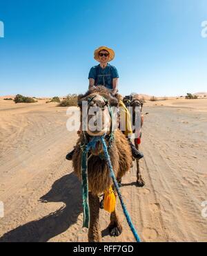 Young man riding on a camel, caravan with Dromedary (Camelus dromedarius), desert, Erg Chebbi, Merzouga, Sahara, Morocco - Stock Photo