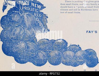 Michael's nursery catalogue : fruit trees, small fruits