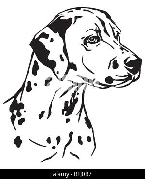 Decorative outline portrait of Dog Dalmatian in profile, vector illustration in black color isolated on white background. Image for design and tattoo. - Stock Photo