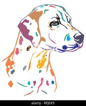 Colorful decorative outline portrait of Dog Dalmatian looking in profile, vector illustration in different colors isolated on white background. Image  - Stock Photo