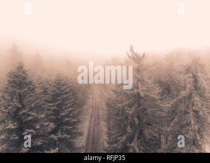 Aerial view of the foggy and snowy winter forest in the mountains - Stock Photo