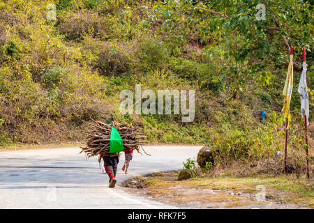 Man carrying tree branch firewood on his shoulders for heating in winter and tradinitally used for cook the food walking on the road side - Stock Photo
