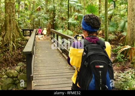 A mother uses a camera to take a photo of her children walking through a rainforest, Eungella National Park, Queensland, Australia