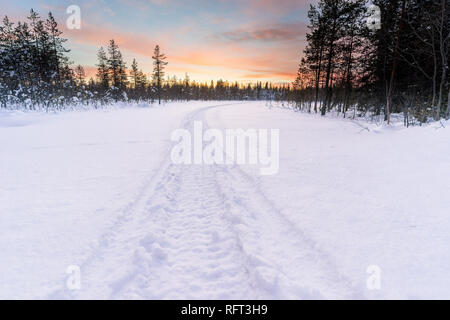 Track in deep snow from a snowmobile leads into the forest, while the sun is setting in Finnsih Lapland. Picture was taken in Pyha, Finland. - Stock Photo