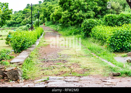 Indian rural garden pathway with green bushes looking awesome. - Stock Photo