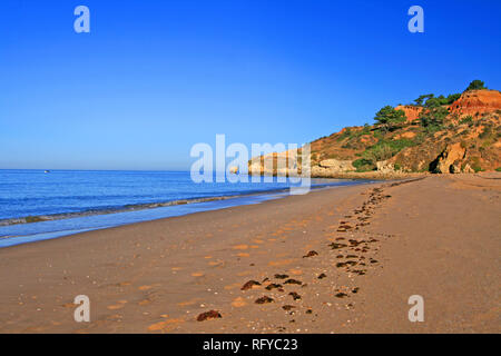 Chilling and walking at a nice beach called Praia da Falesia in Portugal. Sunrise on the loneliness quiet beach is so relaxing. - Stock Photo