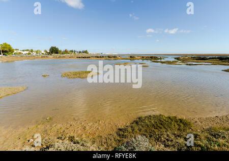Ria Formosa natural park, near Santa Luzia, Barril beach,Algarve, Portugal, Europe. - Stock Photo