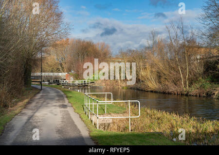 The Don Navigation, Tinsley, Rotherham, South Yorkshire, UK - Stock Photo