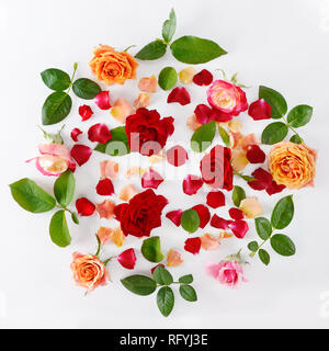 Pink and red roses isolated on white background. Flat lay, top view. - Stock Photo
