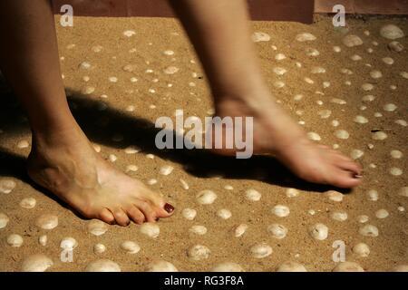 LKA, Sri Lanka : Siddhalepa Ayurveda Resort , walking on llittle stones for a feet massage.