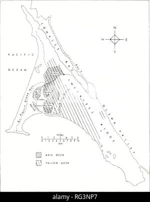 . California fish and game. Fisheries -- California; Game and game-birds -- California; Fishes -- California; Animal Population Groups; Pêches; Gibier; Poissons. EXOTIC DEER POPULATIONS AT POINT REYES 133. FIGURE 1. Ranges of the fallow and axis deer on Point Reyes National Seashore. Cattle grazing occurs in the western and northern part of the National Seashore; its eastern boundary coincides with that of the axis deer range. Names of locations refer to family names associated with ranches. Precipitation also occurs in the form of advection fog, particularly in summer. This fog, as well as fr - Stock Photo