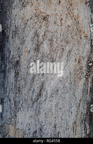 High resolution full frame background of a rough, weathered, damaged and dirty plastered dark gray wall. - Stock Photo