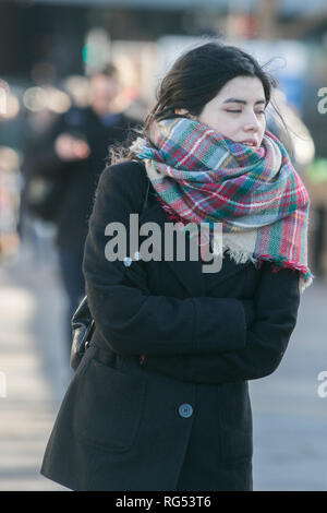 London, UK. 28th Jan, 2019. Pedestrians wrap up warm on Westminster Bridge on a cold and bright Winter morning in London Credit: amer ghazzal/Alamy Live News - Stock Photo