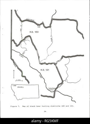 . Cabinet Mountains grizzly bear study. Wildlife management; Grizzly bear. . Please note that these images are extracted from scanned page images that may have been digitally enhanced for readability - coloration and appearance of these illustrations may not perfectly resemble the original work.. Kasworm, Wayne, 1954-; Montana. Department of Fish, Wildlife, and Parks. [Helena, Mont. ] : The Dept. - Stock Photo