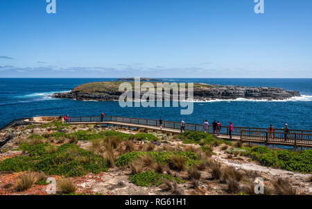 Panoramic view of Cape du Couedic with Casuarina Islets and boardwalk to admirable arch on Kangaroo island in SA Australia - Stock Photo