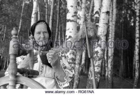 This grandmother is participant of ensemble of Amateur performances. She spins woolen thread with the help of an ancient spinning wheel. An elderly woman is wearing national Belarusian clothes. So looked our ancestors in ancient times, who with the help of spinning wheel made their clothes. I photographed her on lawn near birch grove. - Stock Photo