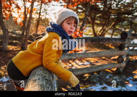 Girl leaning on a wooden fence in late fall, United States - Stock Photo