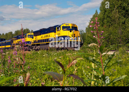 Alaskan train on the move - Stock Photo