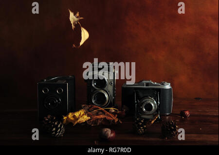 Three vintage cameras surrounded by faded falling leaves.  Dark, low key background and surface. Copy space. - Stock Photo