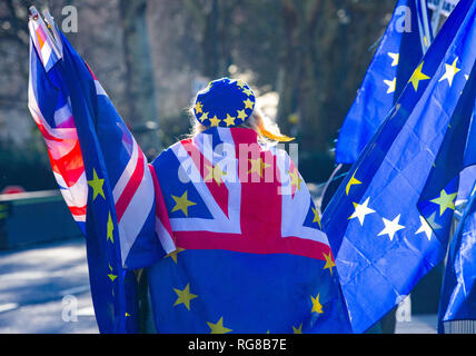 London, UK. 28th Jan, 2019. Pro European supporter with Union flags on College Green in Westminster one day before another crucial Brexit vote. The UK Parliament will debate and vote on a 'Plan B' Brexit plan from Theresa May's government on 29 January, it was announced on Thursday. May suffered one of the biggest defeats in British political history earlier this week, when her withdrawal agreement - negotiated for two years with the EU - was defeated by 230 votes Credit: Tommy London/Alamy Live News - Stock Photo