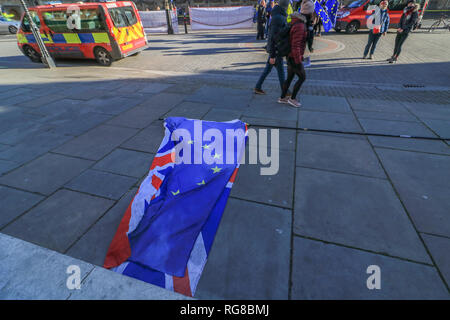 London UK. 28th January 2019. Pro Remain and Leave protesters outside Westminster as Members of Parliament prepare to debate various amendments on the floor of the House of Commons to delay Article 50  and stop a No deal Brexit with 60 days left until Britain leaves the European Union on 29 March Credit: amer ghazzal/Alamy Live News - Stock Photo