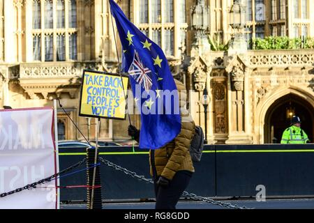 London, UK. 28th Jan 2019. A remain supporter opposite the House of Parliament, Westminster. Credit: Claire Doherty/Alamy Live News - Stock Photo
