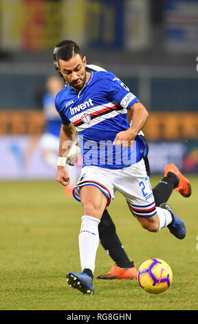 "Foto LaPresse - Tano Pecoraro 26 01 2019 Genova - (Italia) Sport Calcio Sampdoria vs Udinese Campionato di Calcio Serie A TIM 2018/2019 - Stadio ""Luigi Ferraris"" nella foto: quagliarella fabio  Photo LaPresse - Tano Pecoraro 26 January 2019 City Genova - (Italy) Sport Soccer Sampdoria vs Udinese Italian Football Championship League A TIM 2018/2019 - ""Luigi Ferraris"" Stadium in the pic: quagliarella fabio - Stock Photo"