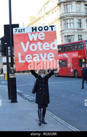 London, UK. 28th January 2019. Pro Brexit protester outside Parliament, London, UK. Credit: Joe Kuis /Alamy Live News - Stock Photo