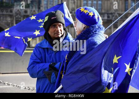 London, UK. 28th January 2019. Remainers protested opposite the Houses of Parliament.On the eve of a series of crunch votes on the future of Brexit.Westminster, London.UK Credit: michael melia/Alamy Live News - Stock Photo