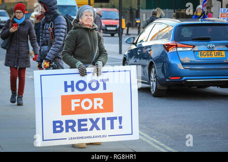 Westminster, London,UK. 28th January 2019. A woman with 'Hoot for Brexit' placard, in support of the Leave campaign. Pro- and Anti-Brexit activists with placards, signs and flags protest around Parliament Square and outside the Houses of Parliament in Westminster. Credit: Imageplotter News and Sports/Alamy Live News - Stock Photo