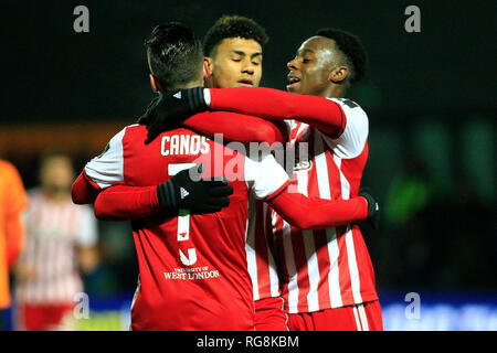 London, UK. 28th Jan, 2019. Ollie Watkins of Brentford Credit: celebrates with teammates after scoring his team's first goal. The Emirates FA Cup 4th round match, Barnet FC v Brentford at the Hive Stadium in Edgware, London on Monday 28th January 2019 . this image may only be used for Editorial purposes. Editorial use only, license required for commercial use. No use in betting, games or a single club/league/player publications. Credit: Steffan Bowen/Andrew Orchard sports photography/Alamy Live News - Stock Photo