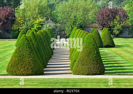 Elizabethan rural garden topiary & path in historic parklands & gardens rows of conifers casting shadows at Littlecote House in Wiltshire England UK - Stock Photo