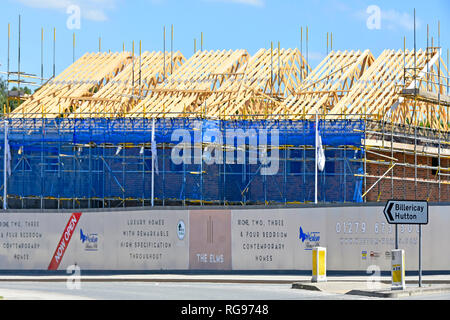 Timber roof & scaffolding house development building construction site of new homes with help to buy home logo on hoarding Brentwood Essex England UK - Stock Photo