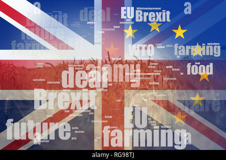 Brexit concept. A field of summer wheat and Barley. With a word cloud of brexit jargon and the flags of the Union Jack and the E.U over layered on top - Stock Photo