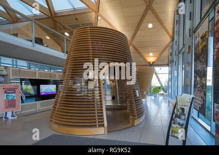 Interior of the Living Planet Centre, the home of WWF UK (world wildlife fund) in Woking, Surrey, with pods or zones representing diverse environments - Stock Photo