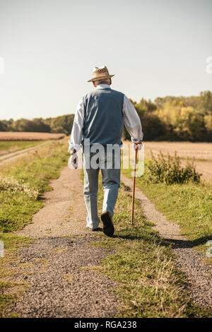 Senior man with a walking stick, walking in the fields, rear view - Stock Photo