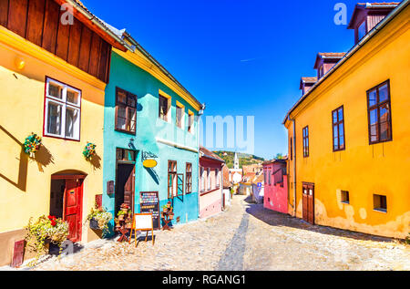 Sighisoara, Romania: Famous stone paved old streets with colorful houses in the medieval city-fortress