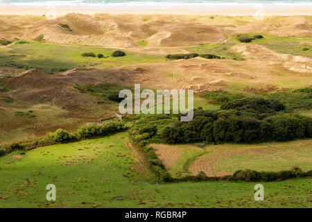 France, Manche, Cotentin, Cap de la Hague, Biville dunes massif, one of the oldest in Europe, is a protected nature reserve. English Channel, Normandy - Stock Photo