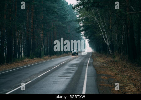 Van driving on country road through pine forest - Stock Photo