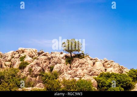 Spain, Málaga Province, Sierra del Torcal mountain range, El Torcal de Antequera nature reserve, limestone formations - Stock Photo