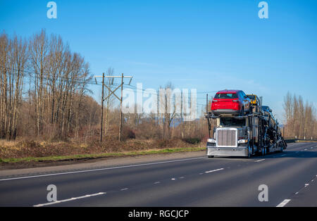 Big rig American model bonnet long haul car hauler semi truck with chrome custom bumper transporting different cars on two level semi trailer and driv - Stock Photo