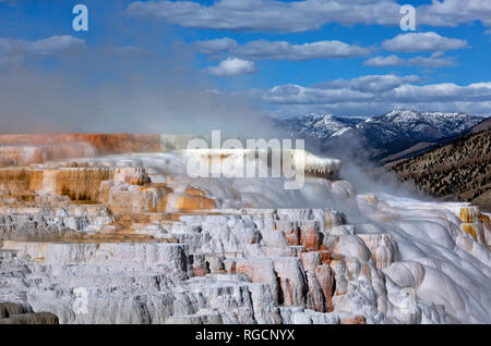 WY03046-00...WYOMING - Cupid Spring on the Upper Terrace of Mammoth Hot Springs in Yellowstone National Park. - Stock Photo