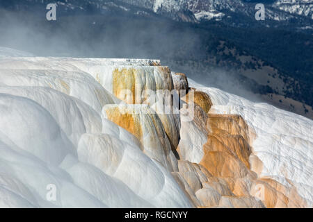 WY03047-00...WYOMING - Cupid Spring on the Upper Terrace of Mammoth Hot Springs in Yellowstone National Park. - Stock Photo
